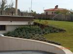 jardines en Valladolid. URBANIZACIÓN EL BOSQUE REAL. mantenimiento de jardines